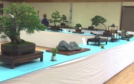 CB-suiseki+Yamato display