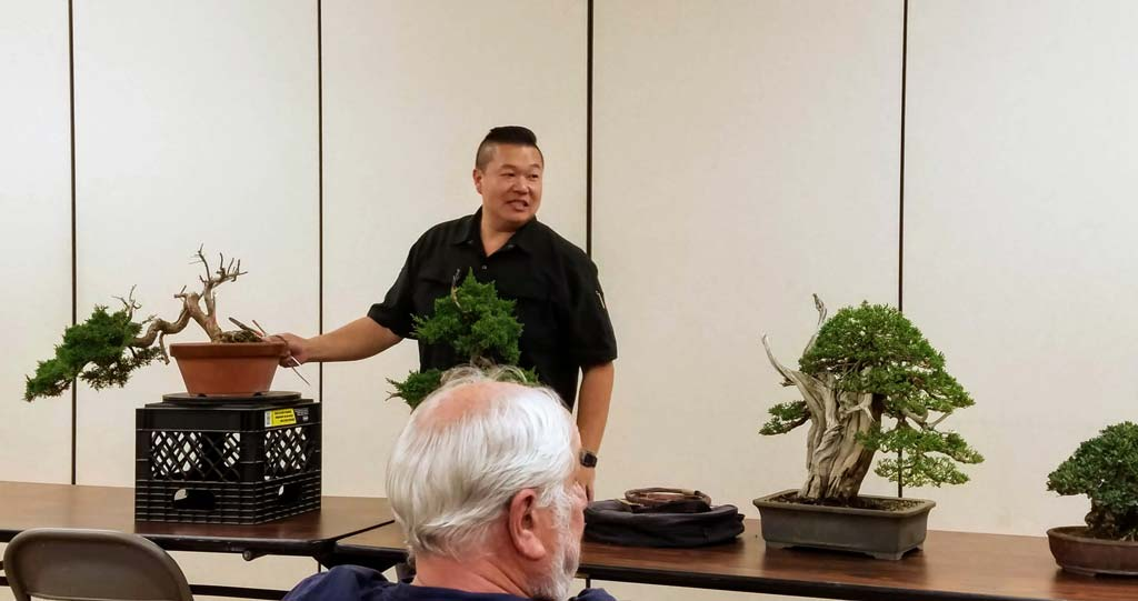 August 2019 Peter Tea On Junipers Marin Bonsai Club