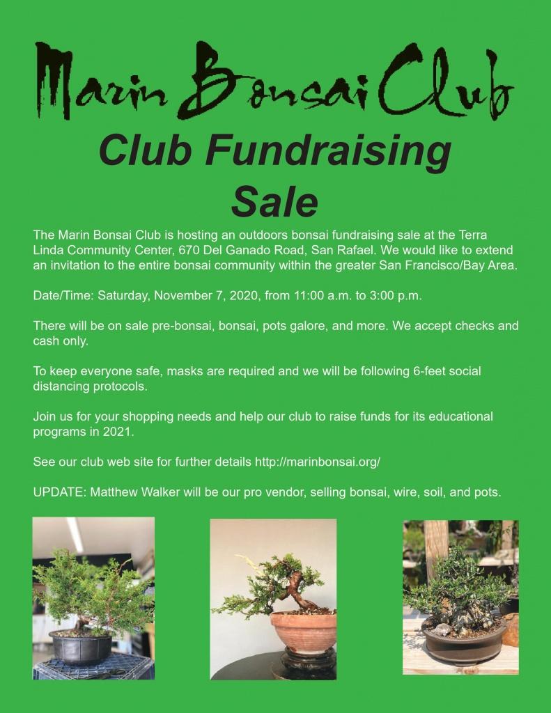 Marin Bonsai Club
